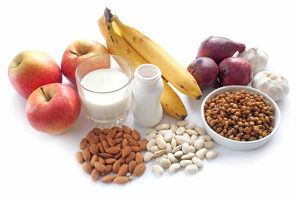 Prebiotic vs Probiotic foods for Gut Health and to Boost Immunity